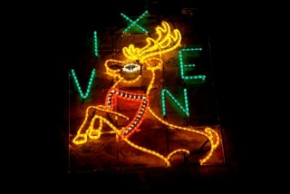 Reindeer Vixen 2013