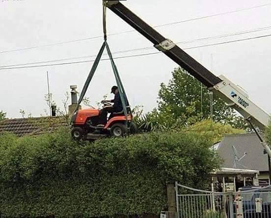 High rise hedge trimming